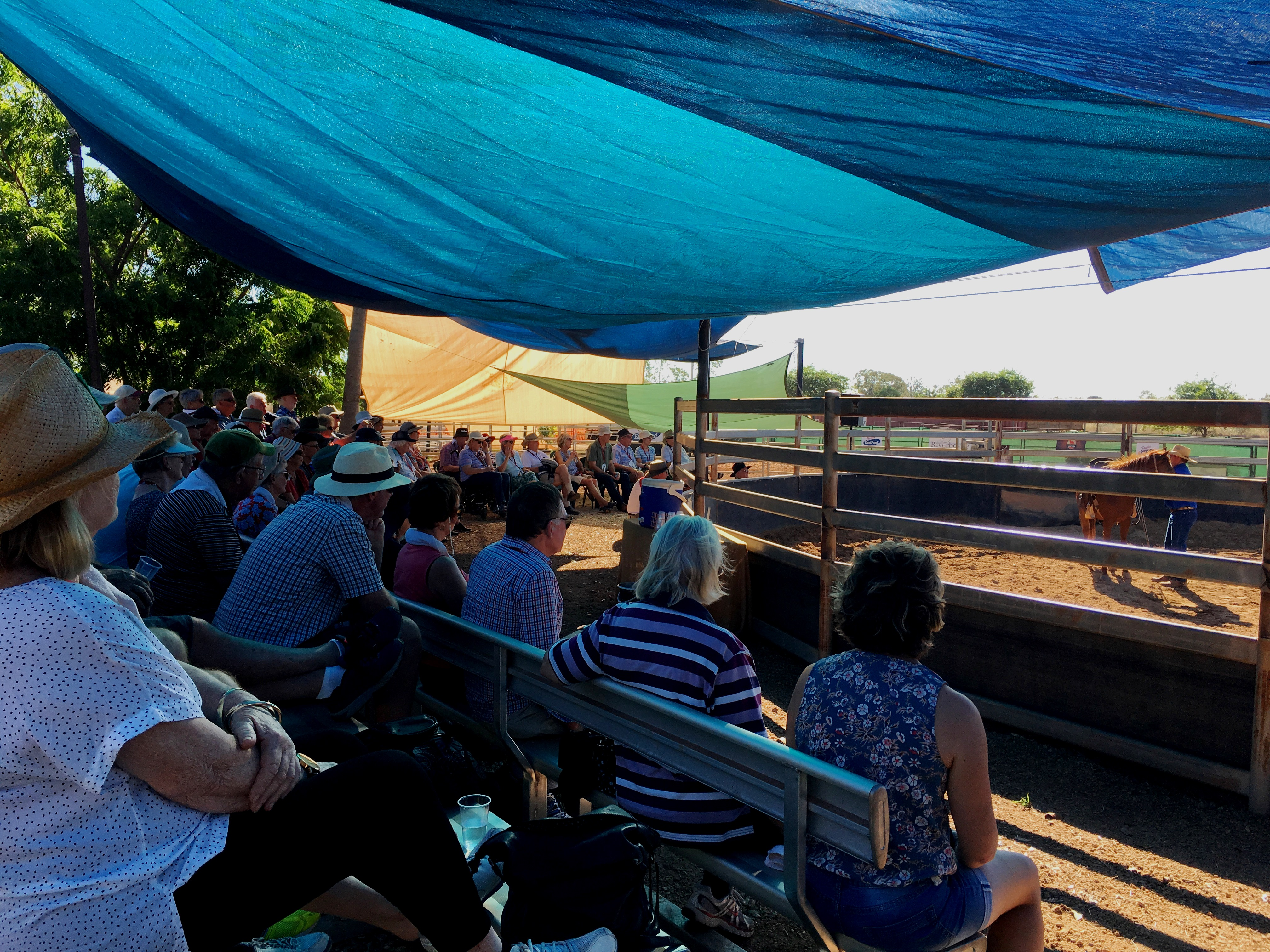 Guests watching a Katherine Outback Experience show